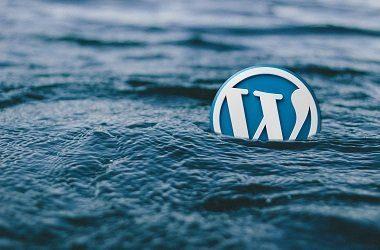 Kako WordPress različico prestavimo na predhodno ali starejšo različico?